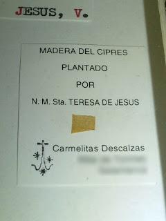 Ciprés plantado por Teresa